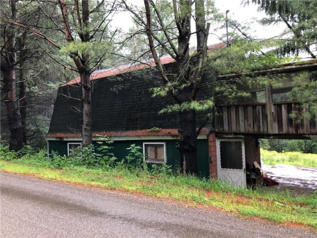 9020 W Bucktooth Run Road, Napoli, NY 14755 (MLS #B1142910) :: Updegraff Group