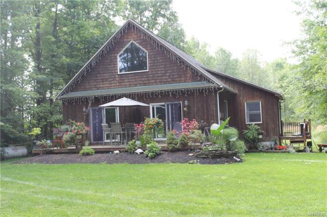 3416 Braley Road, Wilson, NY 14131 (MLS #B1144921) :: BridgeView Real Estate Services