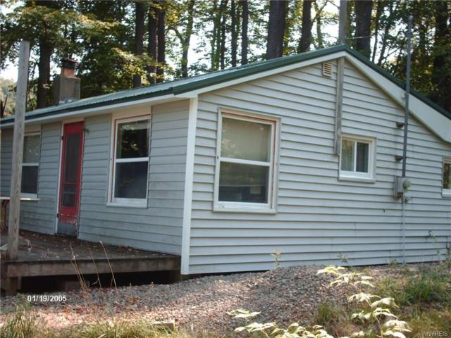 66 Linlyco Lake Road, New Albion, NY 14719 (MLS #B1145044) :: The CJ Lore Team | RE/MAX Hometown Choice