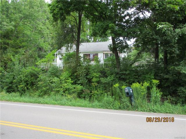 9670 N Shore Rd County Rt 7 N, Cuba, NY 14727 (MLS #B1145473) :: The Rich McCarron Team