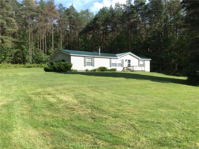 2540 E Haskell Road E, Portville, NY 14727 (MLS #B1146058) :: Robert PiazzaPalotto Sold Team