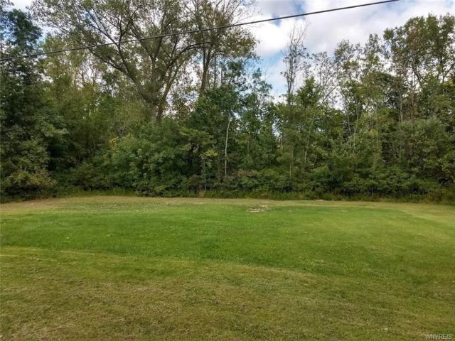 16379 Munger Road, Clarendon, NY 14422 (MLS #B1148246) :: The CJ Lore Team | RE/MAX Hometown Choice