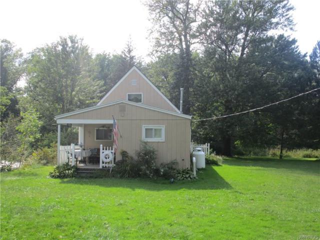 117 Goose Creek Road, Busti, NY 14710 (MLS #B1149203) :: The CJ Lore Team | RE/MAX Hometown Choice