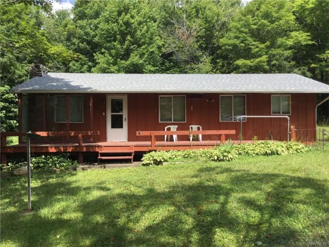 11624 Cadwell Road, Centerville, NY 14024 (MLS #B1149457) :: Updegraff Group