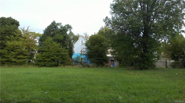 217 Madison Street, Buffalo, NY 14206 (MLS #B1150195) :: Updegraff Group