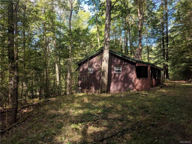 0 Coon Hollow Road, Genesee, NY 14770 (MLS #B1150212) :: BridgeView Real Estate Services