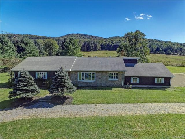 473 Wolf Run Road, Portville, NY 14727 (MLS #B1150242) :: BridgeView Real Estate Services