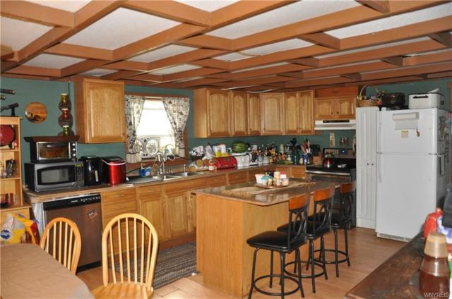 4190 Salt Works Road, Shelby, NY 14103 (MLS #B1151162) :: Robert PiazzaPalotto Sold Team