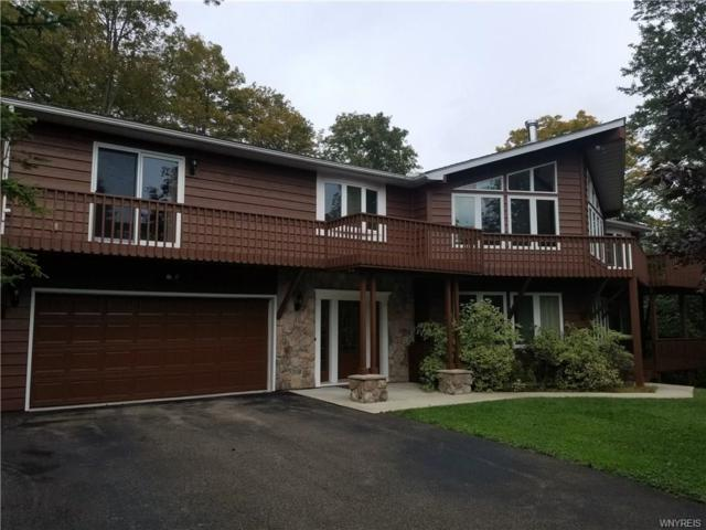 6625 Thistle Road, Ellicottville, NY 14731 (MLS #B1151547) :: Robert PiazzaPalotto Sold Team