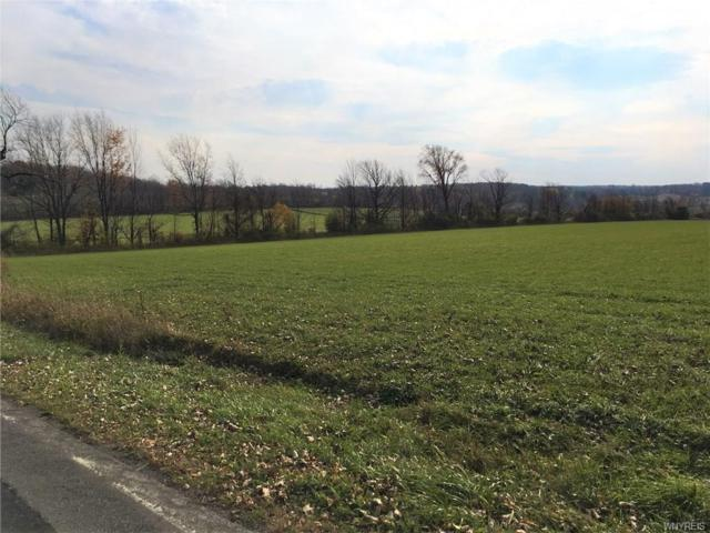 1245 Emery - Lot 2 Road, Aurora, NY 14052 (MLS #B1151966) :: The CJ Lore Team | RE/MAX Hometown Choice