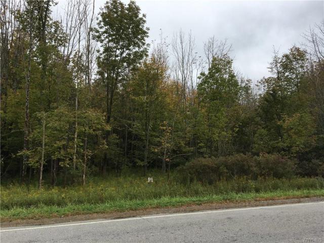 0 VL Vermont Hill Road, Holland, NY 14080 (MLS #B1152087) :: The Chip Hodgkins Team