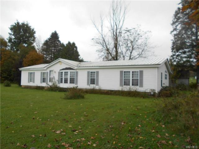 9013 New Albion Road, New Albion, NY 14755 (MLS #B1153531) :: The CJ Lore Team | RE/MAX Hometown Choice