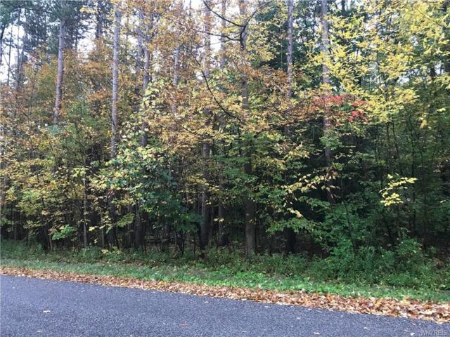 V/L Heath Road, Colden, NY 14033 (MLS #B1153671) :: BridgeView Real Estate Services
