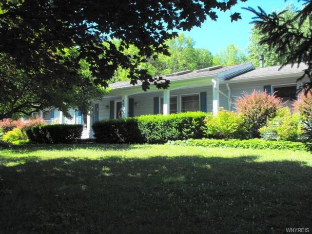 8014 Zimmerman Road, Boston, NY 14075 (MLS #B1153864) :: The CJ Lore Team | RE/MAX Hometown Choice