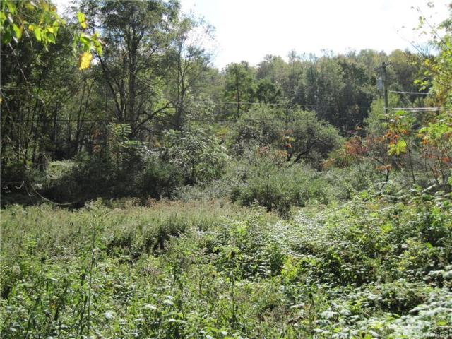 0 Hinman Hollow Road, Mansfield, NY 14731 (MLS #B1153901) :: Updegraff Group