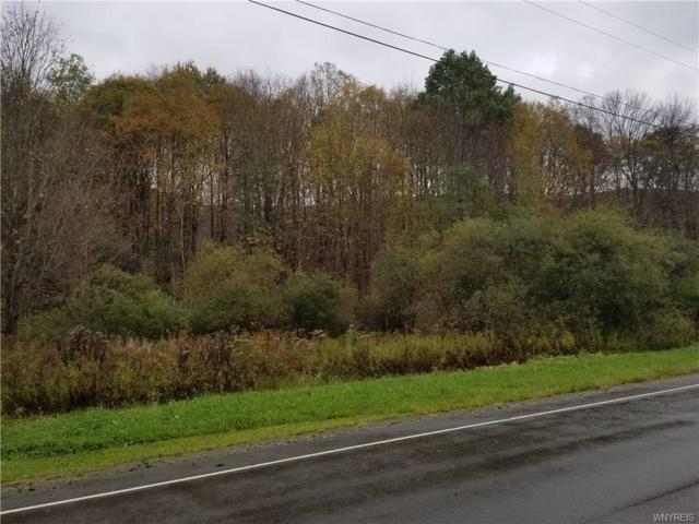 0 Ellicottville-Maples Road, Mansfield, NY 14731 (MLS #B1154233) :: Robert PiazzaPalotto Sold Team