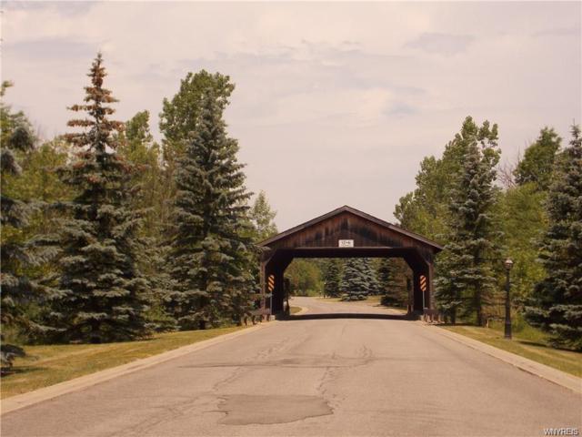 5161 Country Club Trail, Lewiston, NY 14092 (MLS #B1155041) :: The CJ Lore Team | RE/MAX Hometown Choice