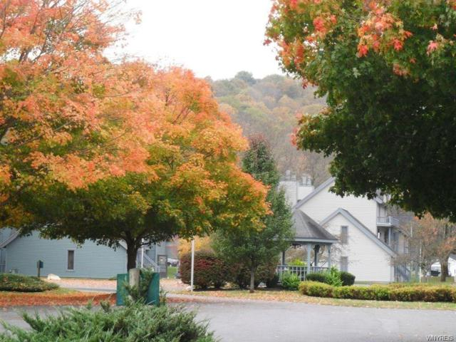 92 Wildflower Apts, Ellicottville, NY 14731 (MLS #B1155449) :: The CJ Lore Team | RE/MAX Hometown Choice
