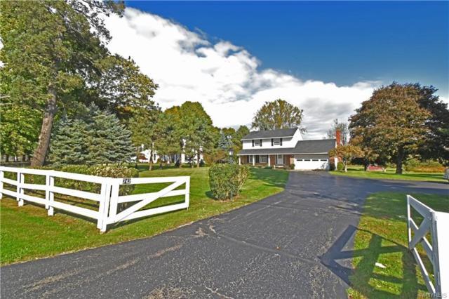 742 Sturgeon Point Road, Evans, NY 14047 (MLS #B1156356) :: The Chip Hodgkins Team