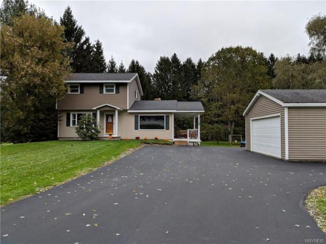 3559 State Route 19 S, Warsaw, NY 14569 (MLS #B1156399) :: The Rich McCarron Team