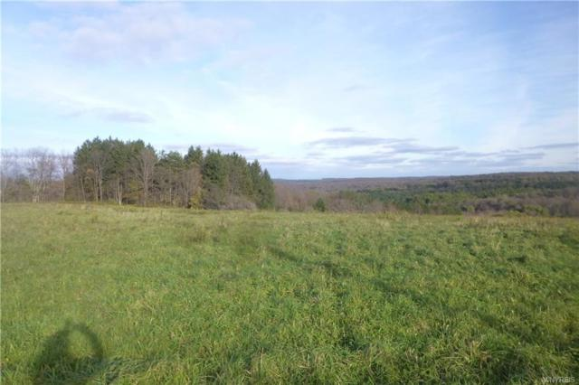 0 East Hill Road, Franklinville, NY 14737 (MLS #B1156736) :: The CJ Lore Team | RE/MAX Hometown Choice