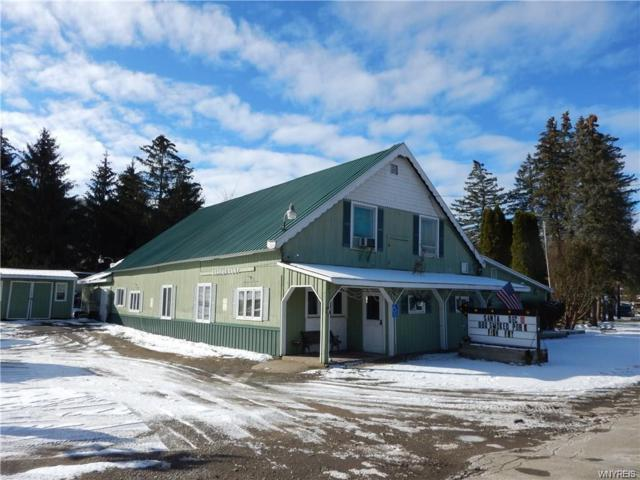 9219 Route 219, Ashford, NY 14171 (MLS #B1157036) :: The Rich McCarron Team