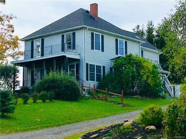 675 Center Street, Aurora, NY 14052 (MLS #B1157193) :: BridgeView Real Estate Services