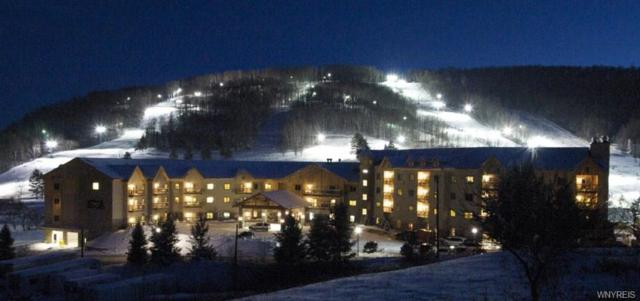 6447 Holiday Valley Road 510/512-1 Tamar, Ellicottville, NY 14731 (MLS #B1157896) :: BridgeView Real Estate Services