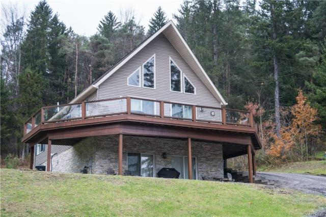 6425 Northwood Drive, Ellicottville, NY 14731 (MLS #B1158500) :: The Rich McCarron Team