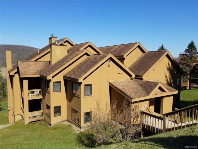 C202 Snowpine, Ellicottville, NY 14731 (MLS #B1158712) :: BridgeView Real Estate Services