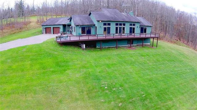9088 S Hill Road, Colden, NY 14025 (MLS #B1159633) :: The Rich McCarron Team