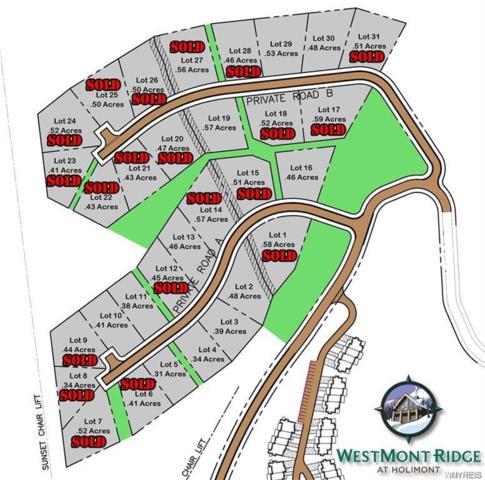 Lot #10 Westmont Ridge, Mansfield, NY 14731 (MLS #B1159845) :: The Rich McCarron Team