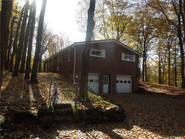 1231 Halls Corners Road, Attica, NY 14011 (MLS #B1159959) :: The Rich McCarron Team