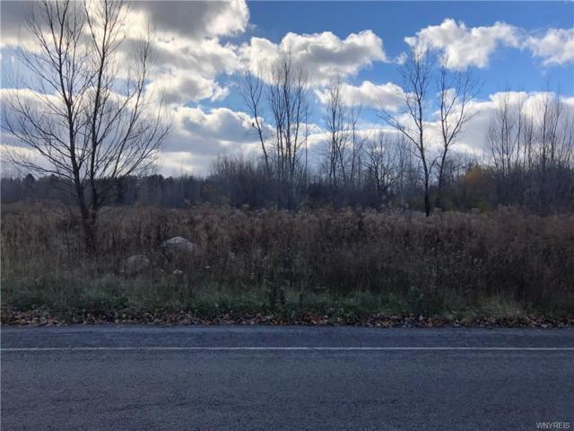 VL Webster Road, Orchard Park, NY 14127 (MLS #B1160149) :: BridgeView Real Estate Services