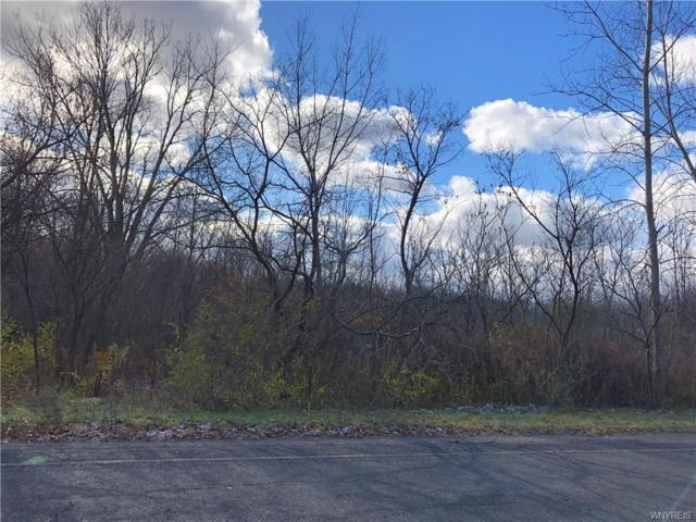 VL Webster Road, Orchard Park, NY 14127 (MLS #B1160153) :: BridgeView Real Estate Services