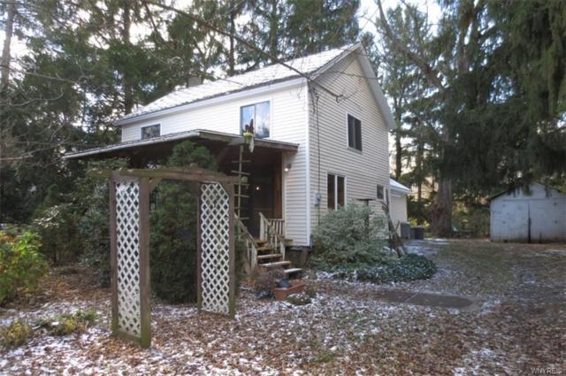 2646 Oak Orchard River Road, Ridgeway, NY 14103 (MLS #B1160556) :: Robert PiazzaPalotto Sold Team