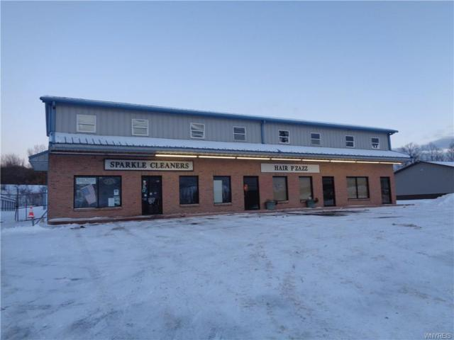 434 Olean Road, Aurora, NY 14052 (MLS #B1160716) :: The Rich McCarron Team