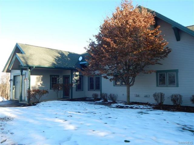 8449 Canterbury Drive, Clymer, NY 14724 (MLS #B1164612) :: Robert PiazzaPalotto Sold Team