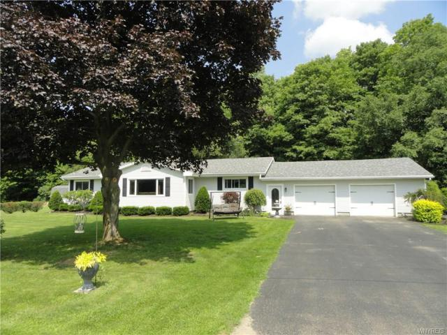 10452 Delevan Elton Road, Freedom, NY 14042 (MLS #B1165650) :: BridgeView Real Estate Services