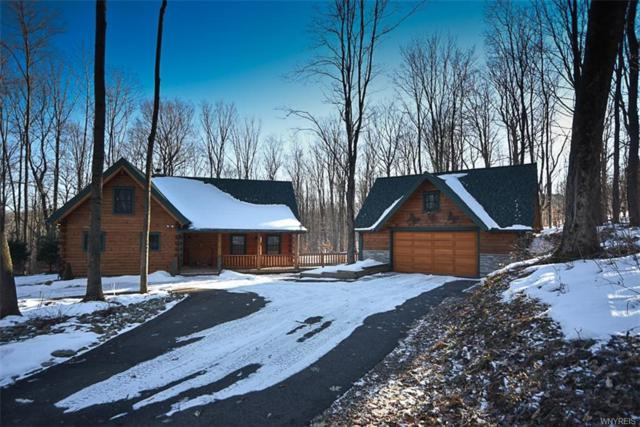 6436 Watson Hill Lane, Mansfield, NY 14731 (MLS #B1165888) :: BridgeView Real Estate Services