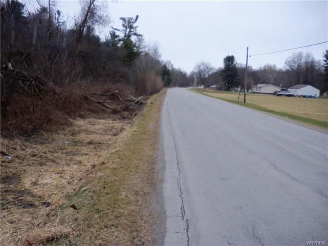 4282 Back River-2 Road, Amity, NY 14813 (MLS #B1166973) :: The Chip Hodgkins Team