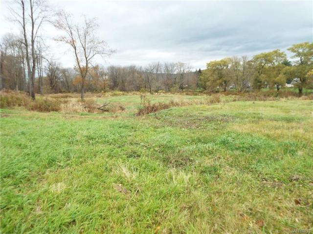 0 Creekside Drive, Allegany, NY 14706 (MLS #B1167793) :: MyTown Realty
