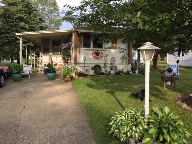 8137 Amy Jenn Drive, Evans, NY 14006 (MLS #B1170165) :: MyTown Realty