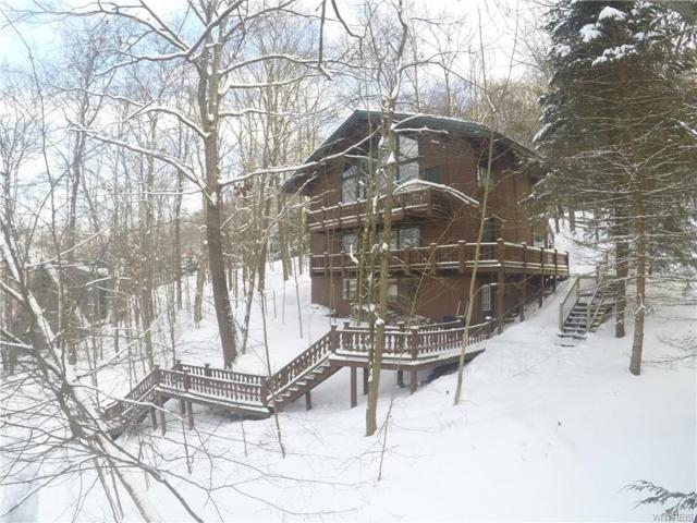 17 Four Wheel Drive, Ellicottville, NY 14731 (MLS #B1170311) :: MyTown Realty