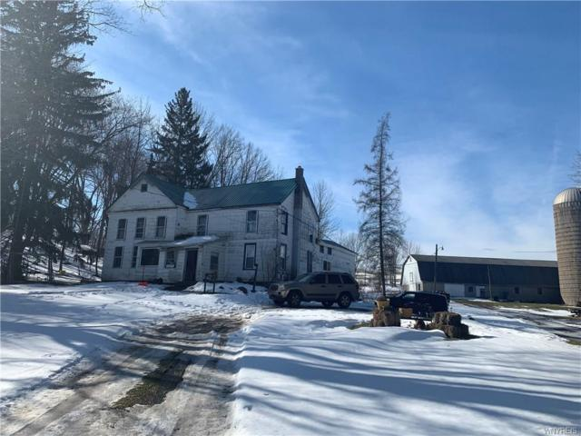 4336 Youngers Road, Java, NY 14113 (MLS #B1171497) :: Robert PiazzaPalotto Sold Team
