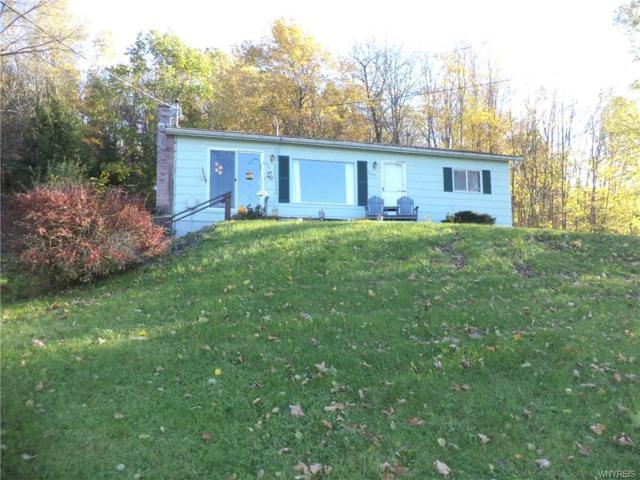 9631 County Road 25, Cuba, NY 14727 (MLS #B1171641) :: BridgeView Real Estate Services