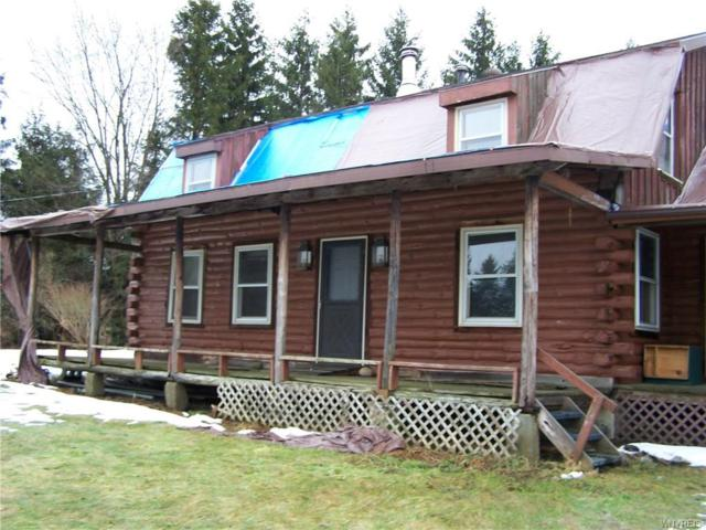 10055 Partridge Road, Colden, NY 14080 (MLS #B1171697) :: BridgeView Real Estate Services