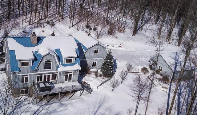 6484 Watson Hill Road Lane, Mansfield, NY 14731 (MLS #B1171766) :: BridgeView Real Estate Services