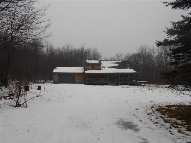 8261 Number One Road, Birdsall, NY 14822 (MLS #B1172061) :: BridgeView Real Estate Services