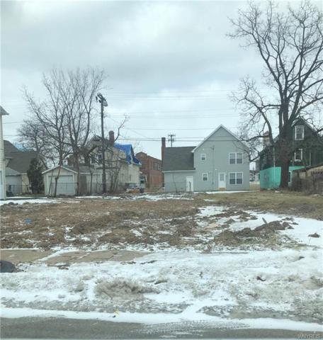 856 Woodlawn Avenue, Buffalo, NY 14211 (MLS #B1172417) :: MyTown Realty